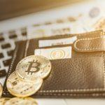 криптовалютные кошельки